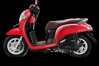 Honda Scoopy Stylish Matte Red